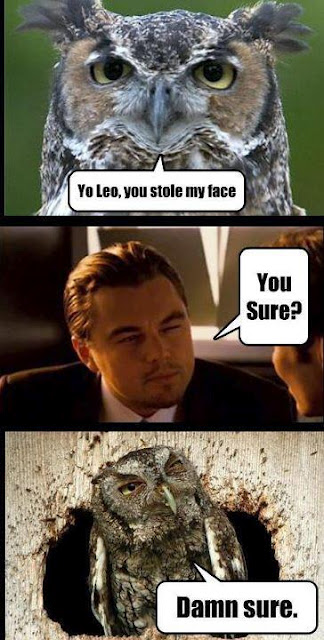 Leo, You Stole My Face !