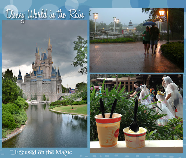 Disney in the Rain, Magical Blogorail