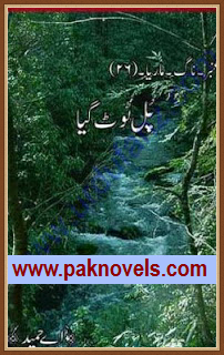 Pull Toot Giya Urdu Novel by A Hameed