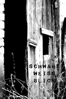 Schwarz Weiss Blick bei Frauke