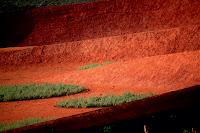 12-El-australiano-Jardín-de-Taylor-Cullity-Lethlean-y-Paul-Thompson