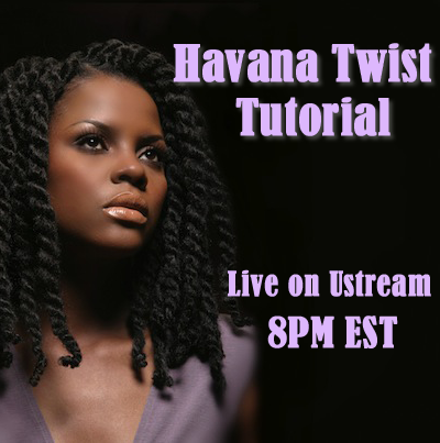 Havana Twists http://curlynugrowth.blogspot.com/2012/11/event-live-havana-twist-tutorial-tonight.html