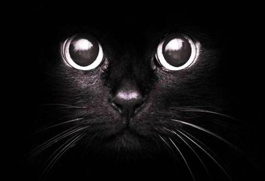 superstitii pis7ica neagra