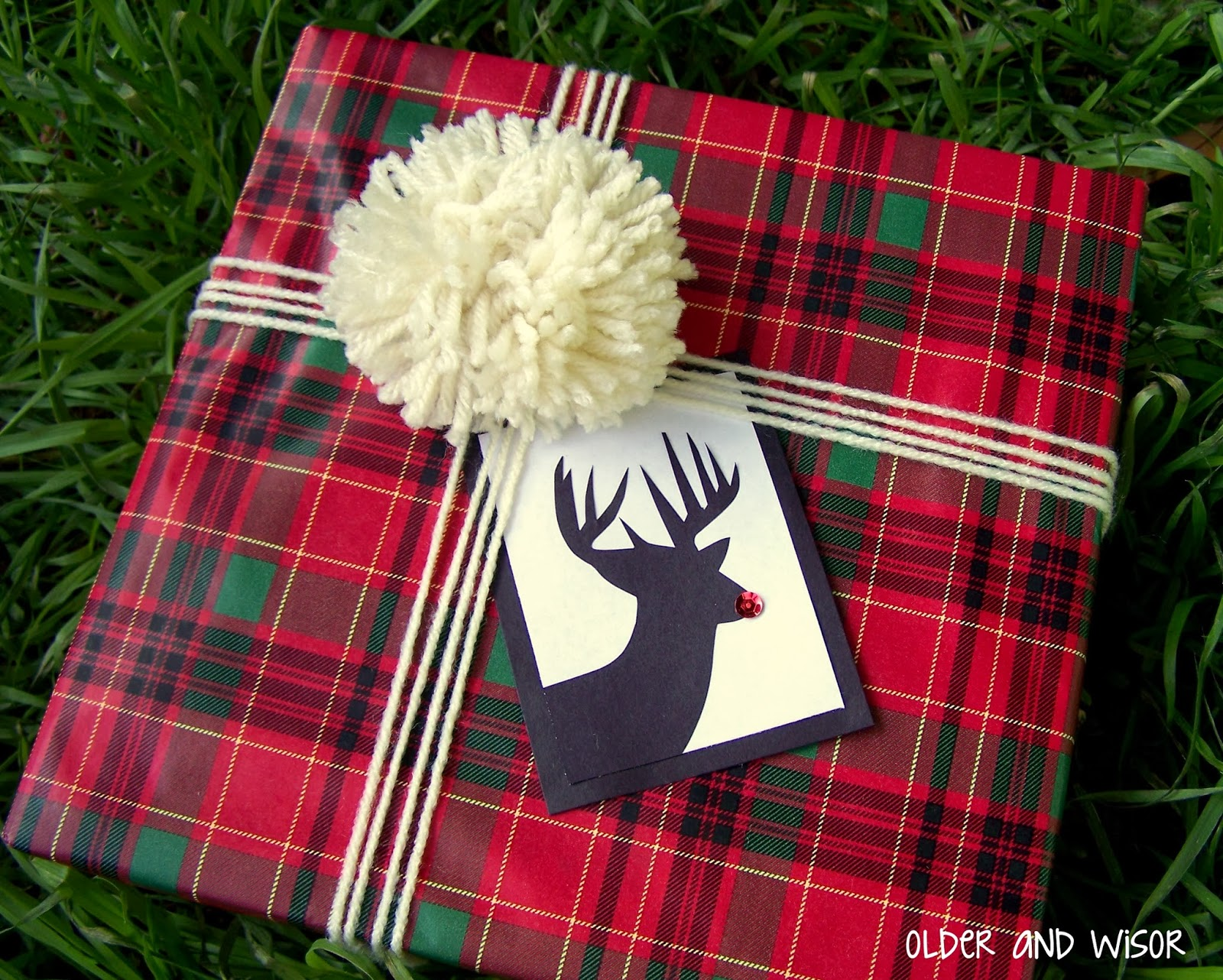 Older and wisor creative christmas gift wrapping ideas 5 for Creative christmas ideas
