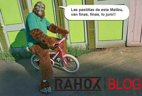 Gorila probando bicicleta