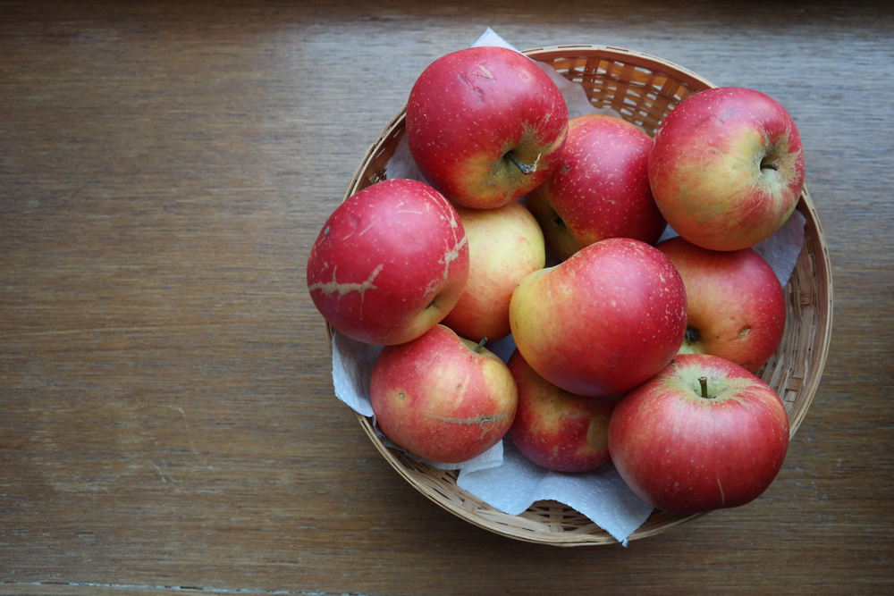 Basket of windfall apples