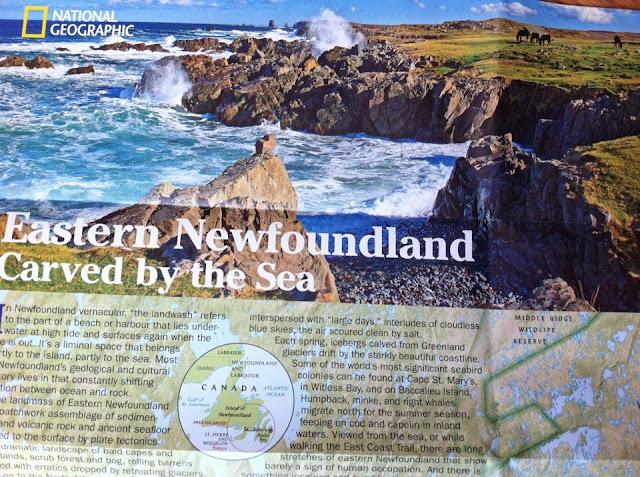 Bonavista St John's Newfoundland Photography
