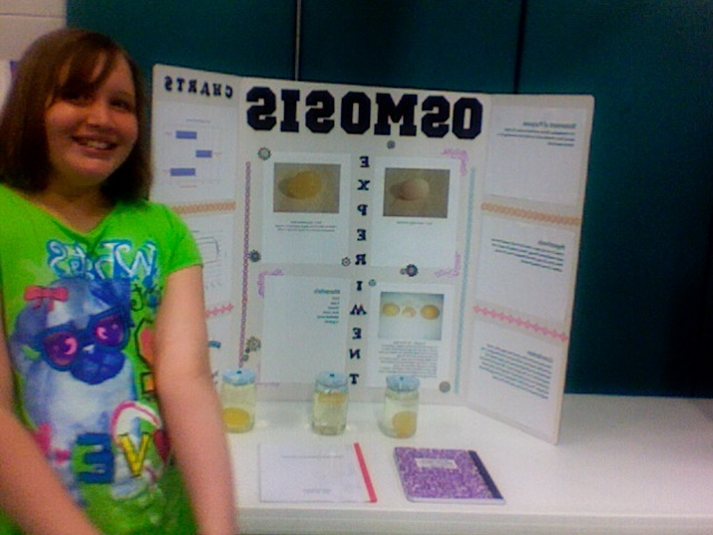 Mrs. A's Awesome 5th Grade: Awesome Science Fair Projects!