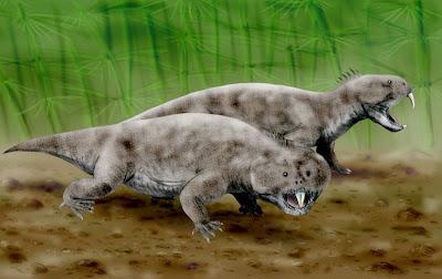 reptiles prehistoricos en argentina Hyperodapedon
