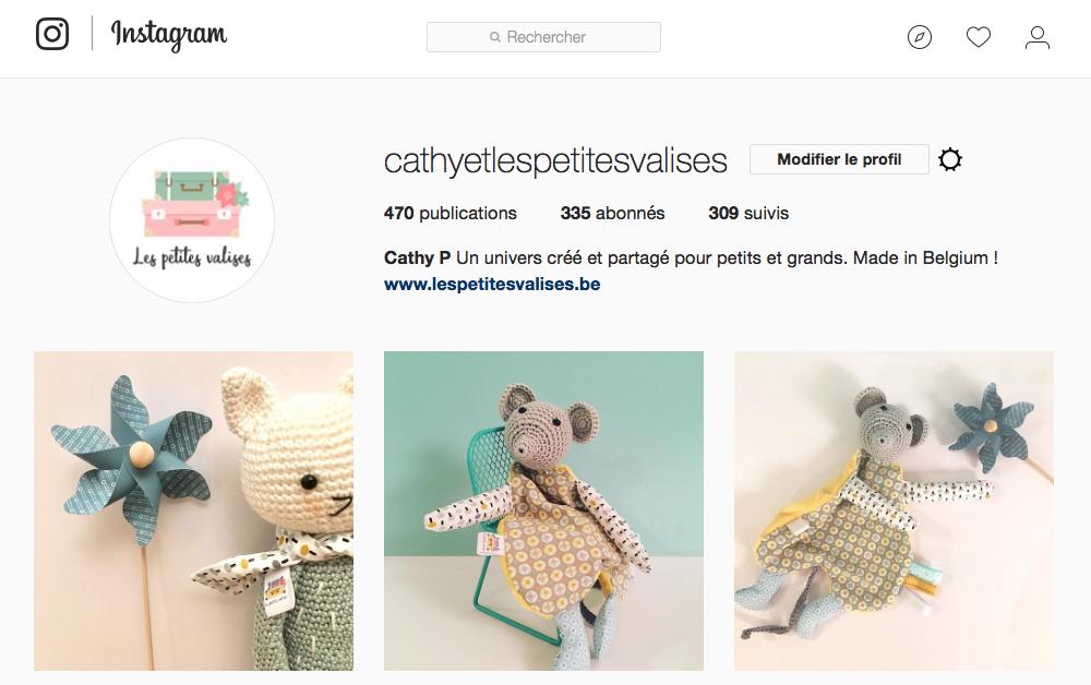 Les petites valises sont sur instagram