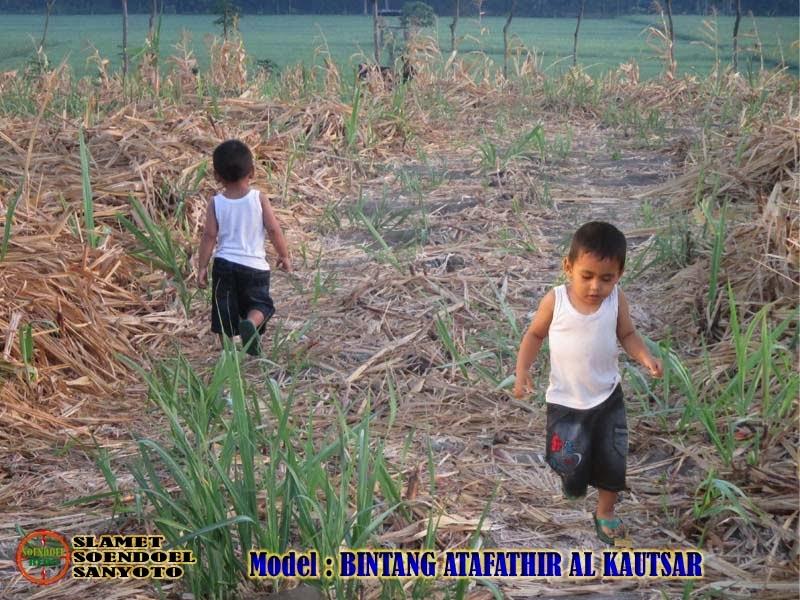 Alang-Alang Dudu Aling-Aling Margining Kautaman