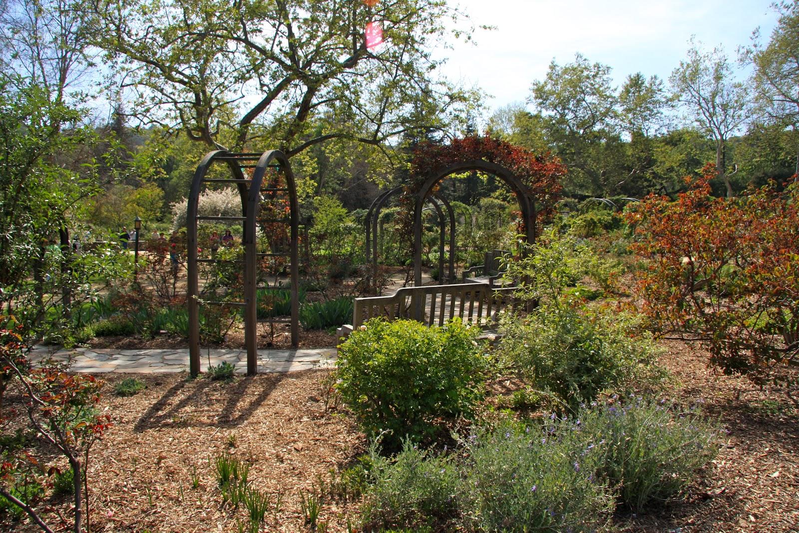 Descanso Gardens | LA to Z