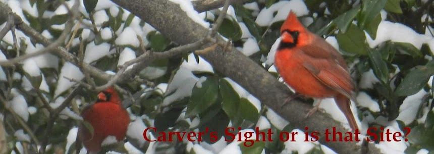 Carver's Sight or is that Site