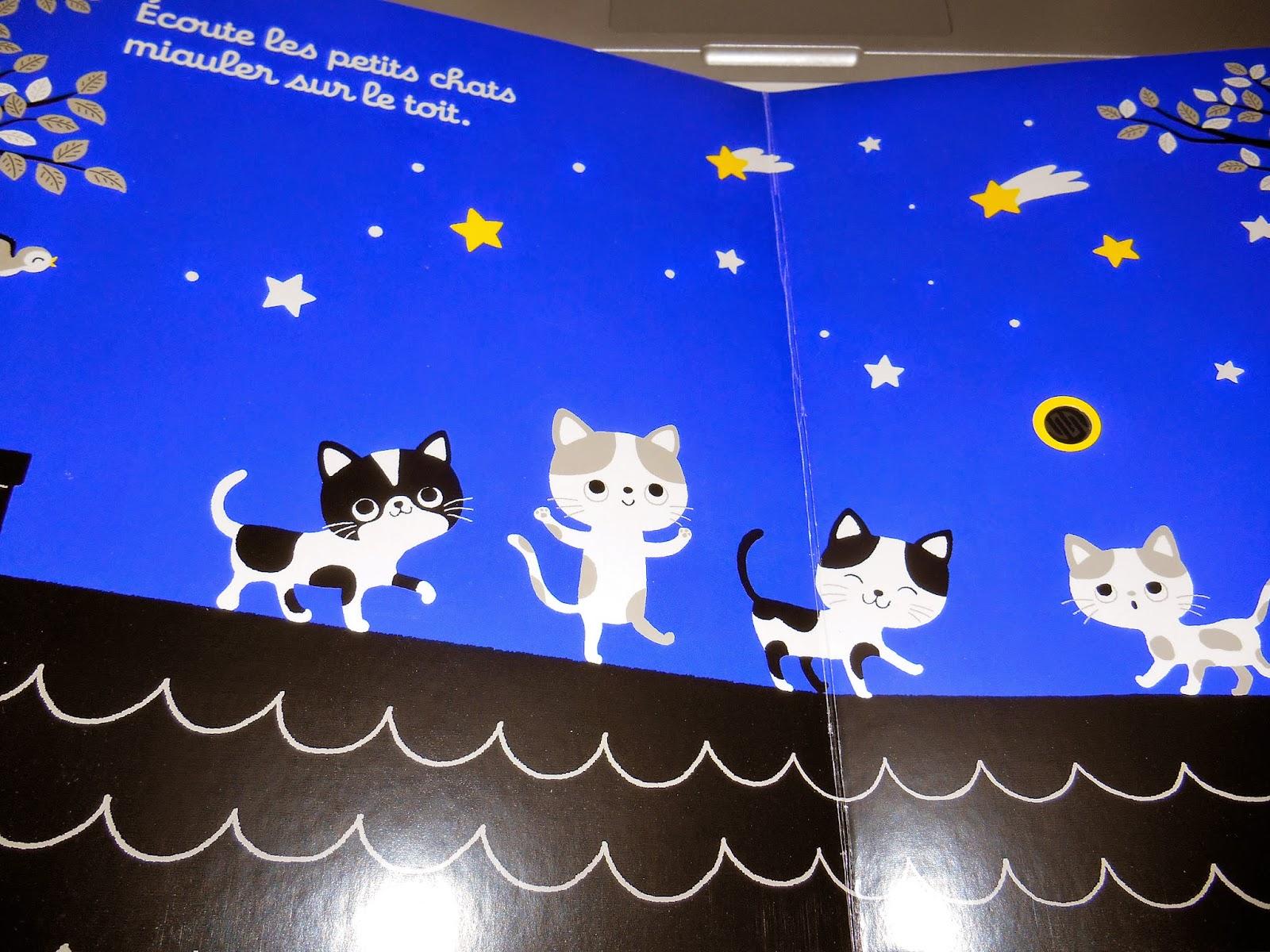 Sous le feuillage ecoute dans la nuit - Bruit qui attire les chats ...