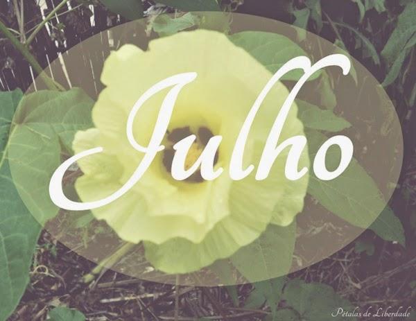 Julho. flor de algodão, amarelo, flor amarela
