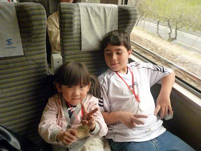 Tren de la muralla china