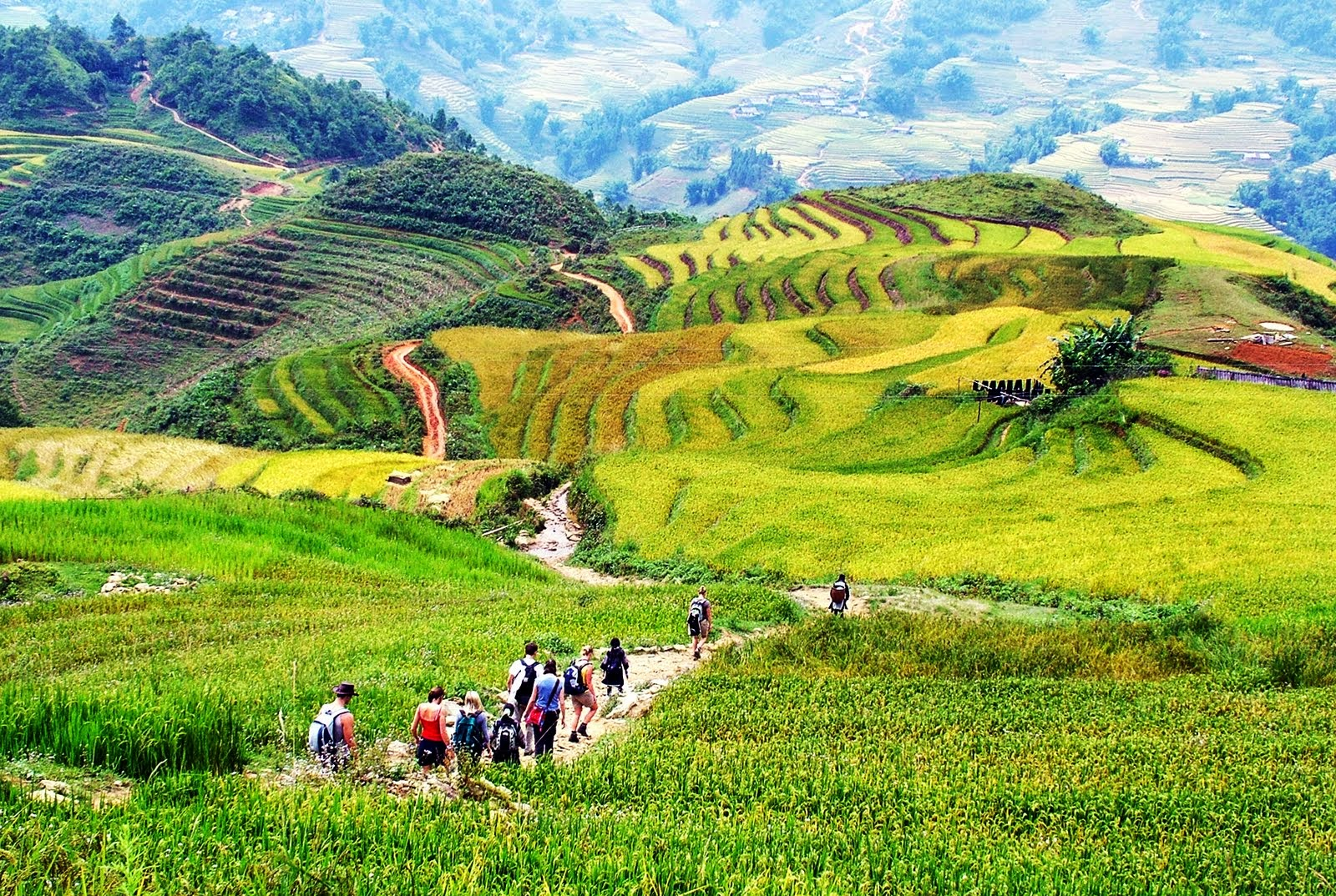 Sapa Tours with Vietwind Travel