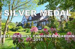 SILVER MEDAL -  Britain's Best Gardeners' Garden 2015