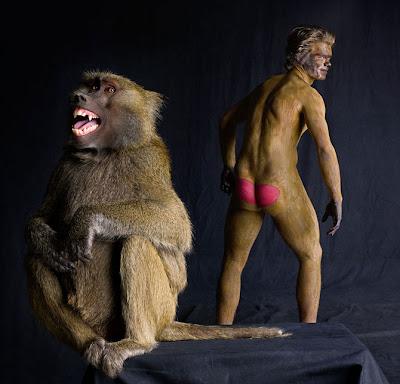 Body paint Babuino Baboon pintar cuerpo