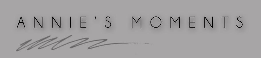 Anna Moragas Blog