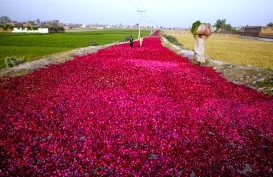 Lahore Pakistán