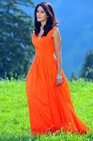 Ileana, Photo, Gallery, in, Sleeveless, Long, Dress