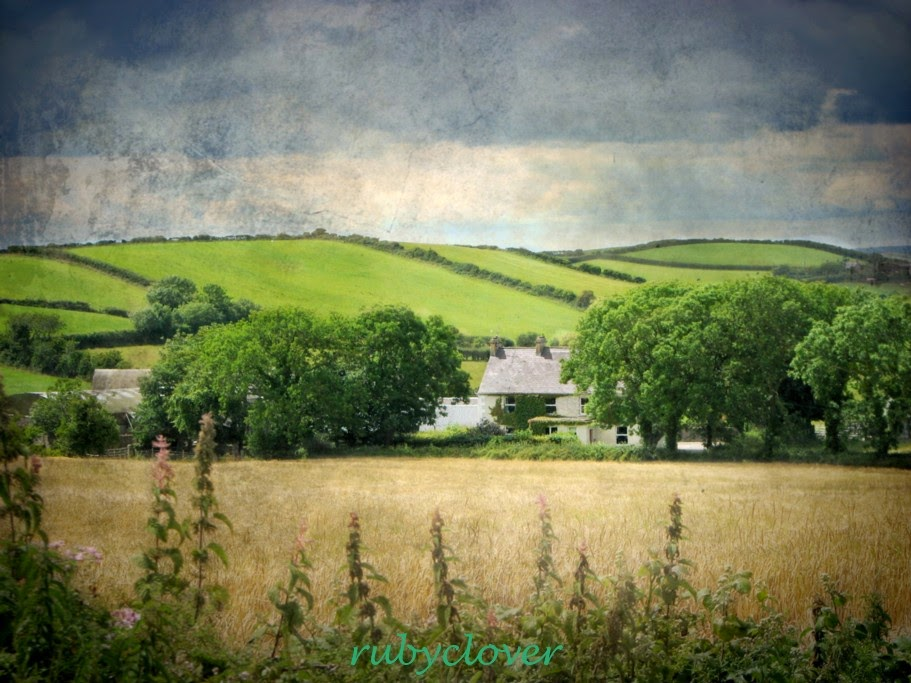 House on the Hill, Co. Down