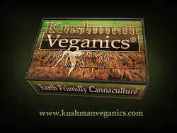 Cannabis Expert - Kyle Kushman