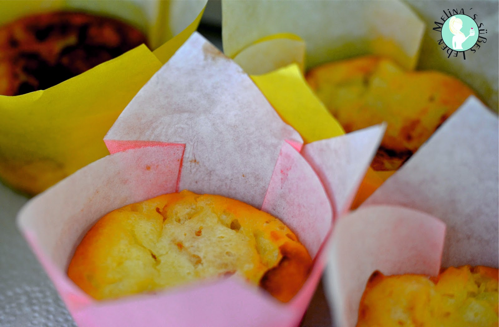 Melina S Susses Leben Kasekuchen Muffins Ohne Mehl Glutenfrei