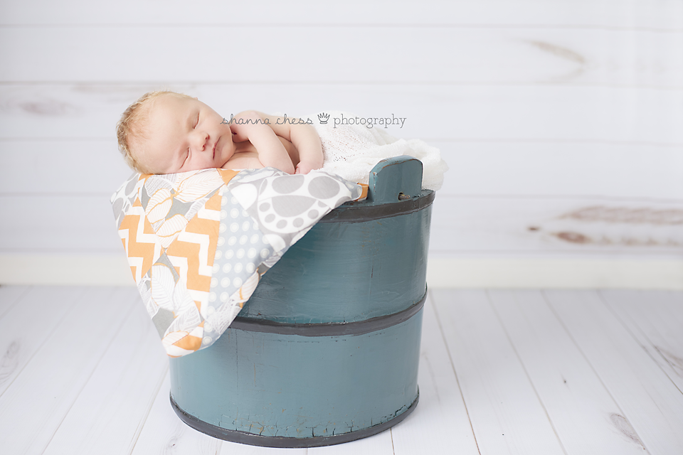 eugene, or newborn photography blue bucket