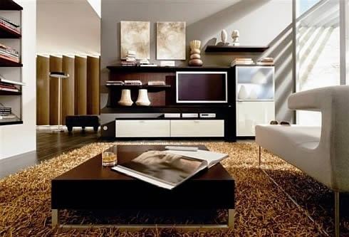 contemporary interior design styles