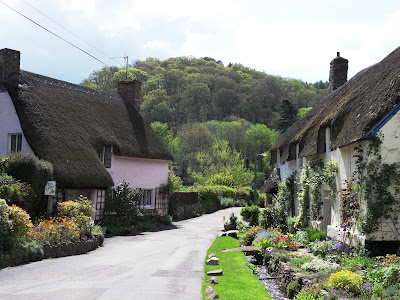 Thatched Cottages in Dunster