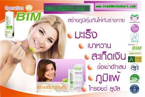 ผลิตภัณฑ์BIM100