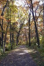 My Trail.