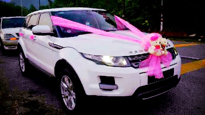 Redorca malaysia wedding and event car rental bridal car decoration wedding car decorations junglespirit Image collections