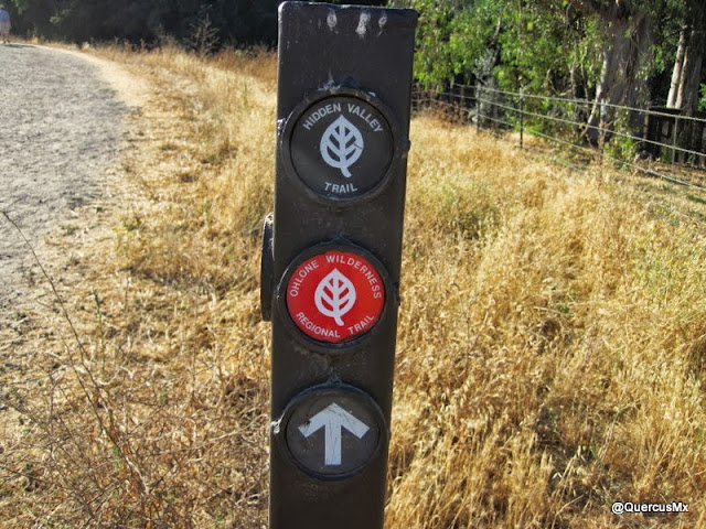 Dos senderos: Hidden Valley y Ohlone wilderness Regional trails