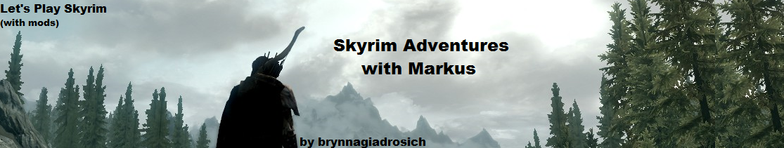 Let's Play Skyrim (With Mods)