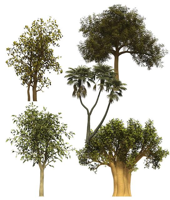 PSD Jenis Pepohonan