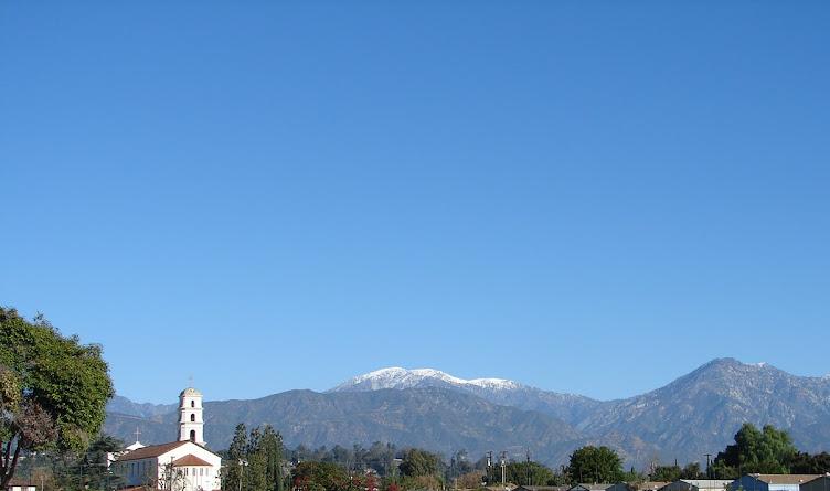 Images of Pomona