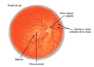 Oftalmologia Costa Rica
