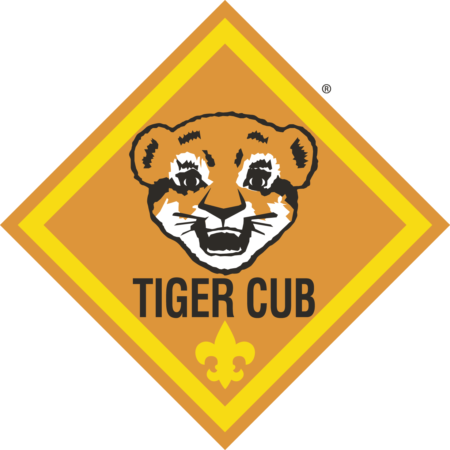 Tiger Den 6