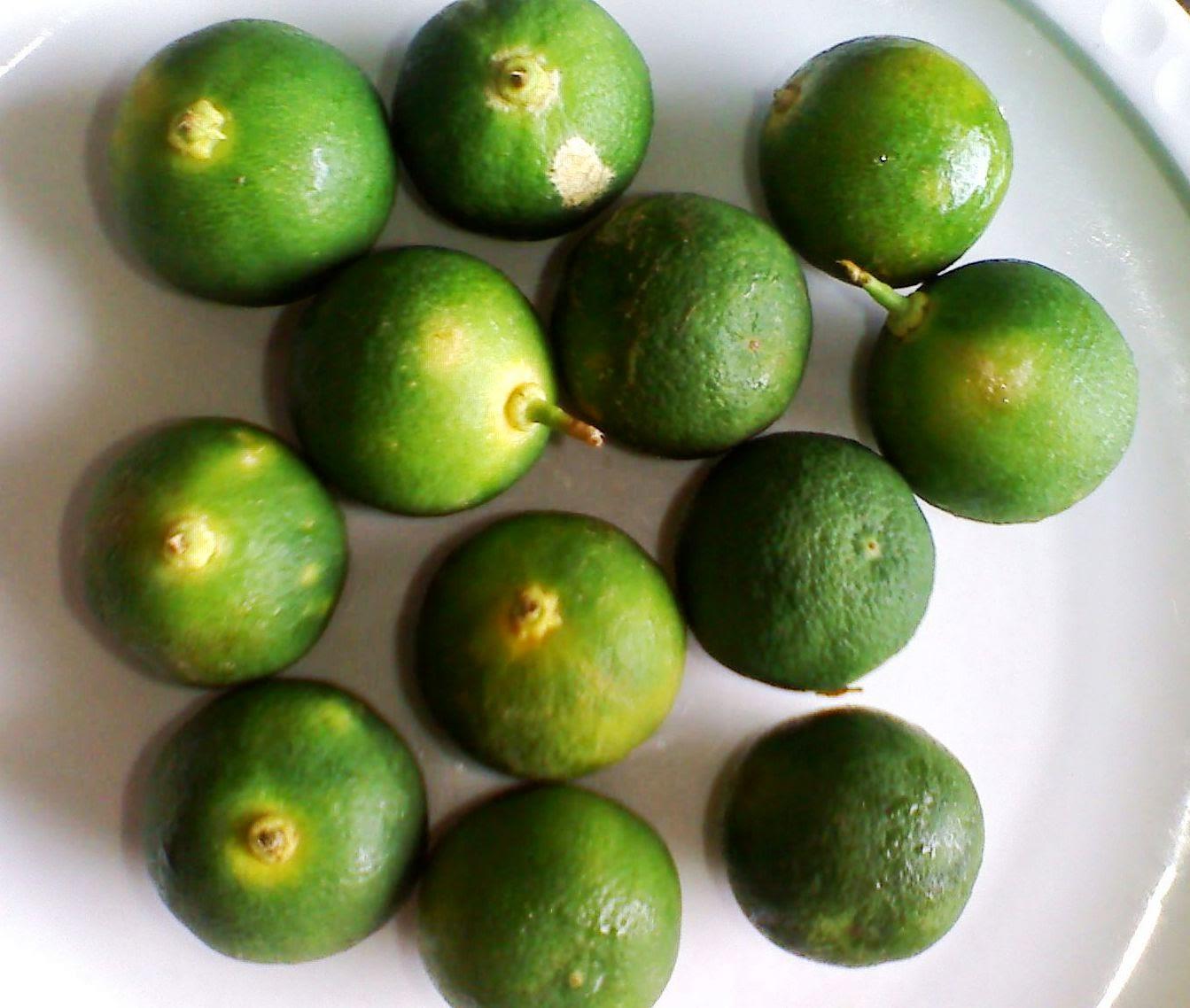 Kumpulan resep masakan online lemon cui