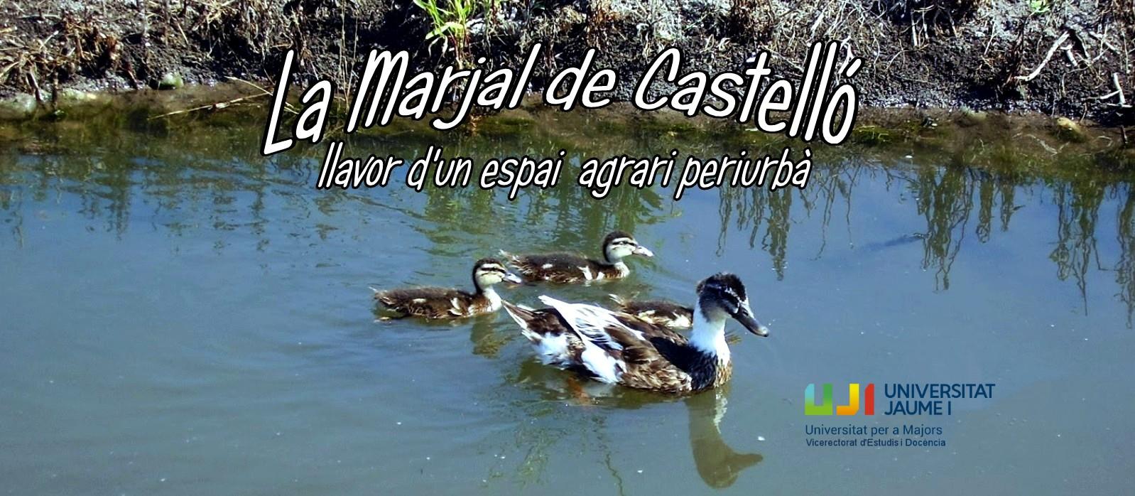 LA MARJAL DEL GRAU DE CASTELLÓ
