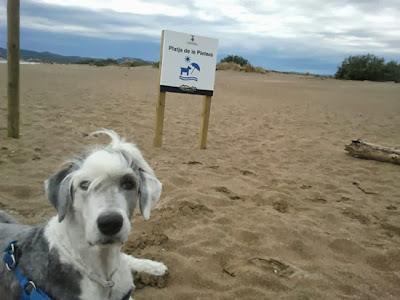 Playa de La Pletera Estartit