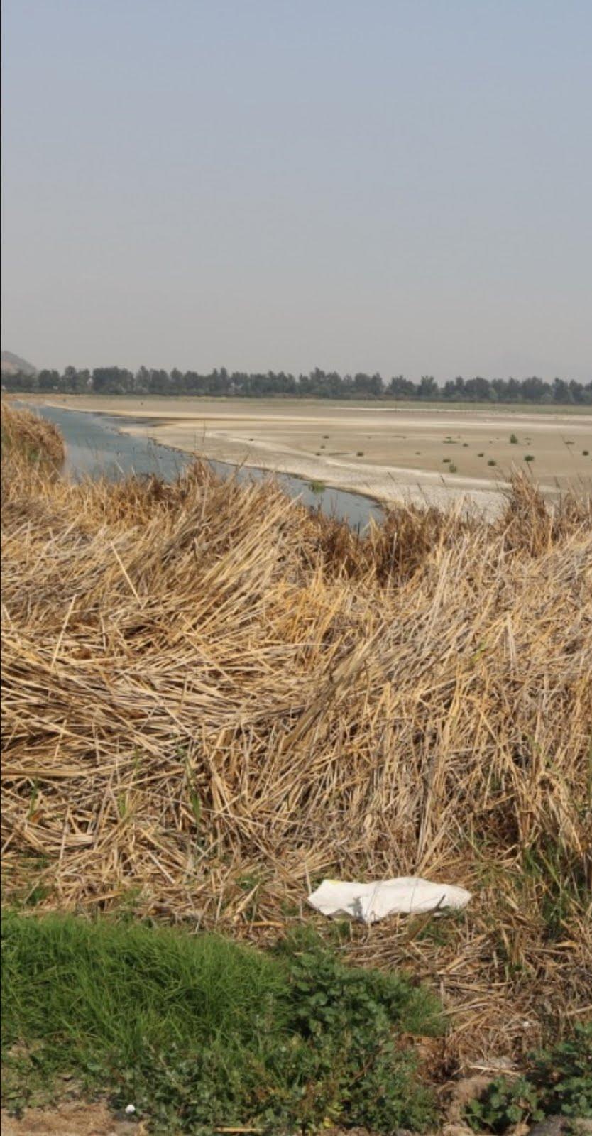 Desciende nivel de agua en las lagunas de Tláhuac-Xico