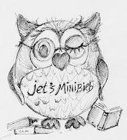 https://www.facebook.com/Jets-Minibieb-1523366784568956/?fref=ts