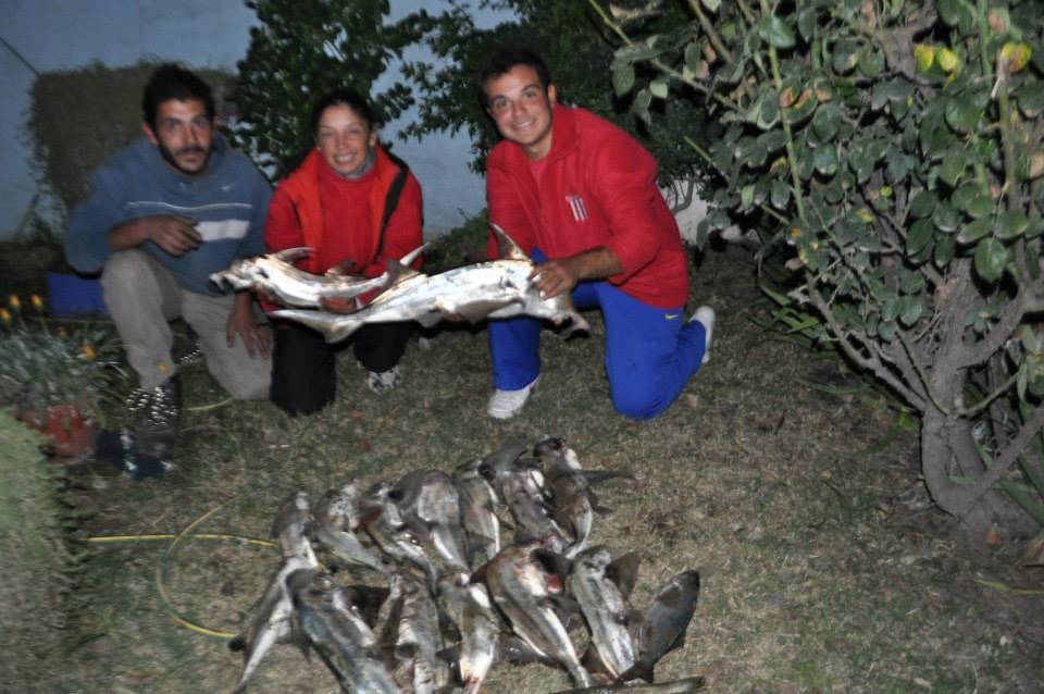 Scatola di slitta invernale da pesca