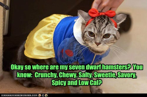 Cat Dressed as Snow White high resolution widescreen