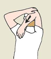 Beneficios de los estiramientos. En forma. Los estiramientos. Cuerpo en forma. como estar en forma