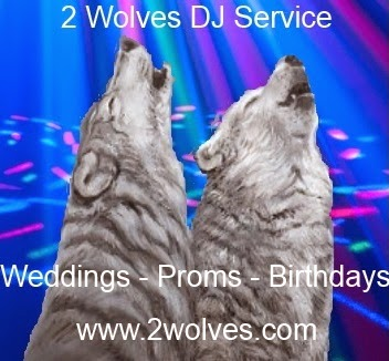 2 Wolves DJ Service